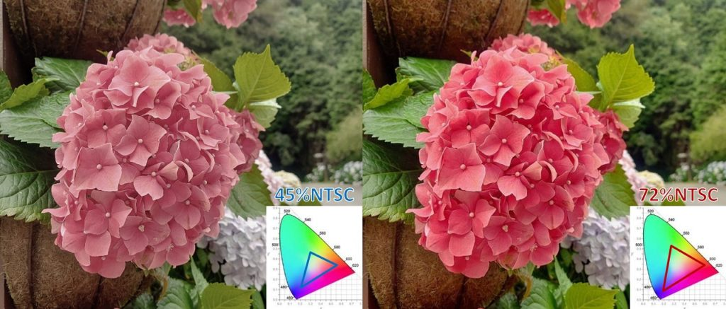 Color Gamut Image 1 1